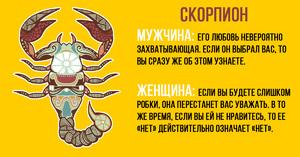 Какие по характеру скорпионы