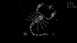 Девушка скорпион: её сущность и характер